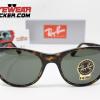 Gafas Ray Ban RB2185 Wayfarer II Clásica Havana Pulida Verde G-15 1 – Gafas Ray Ban Ecuador – EyewearLocker